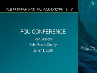 GULFSTREAM NATURAL GAS SYSTEM,  L.L.C.