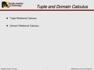Tuple  and Domain Calculus