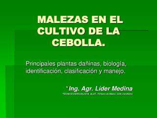 MALEZAS EN EL CULTIVO DE LA CEBOLLA.