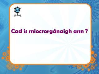 Cad is miocrorgánaigh ann ?