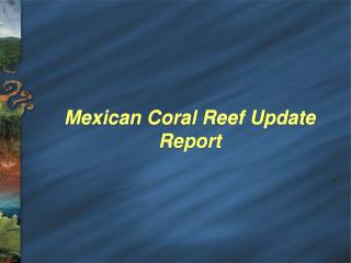 Mexican Coral Reef Update Report