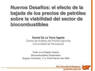 Taller en la Región Andina  Biocombustibles Sostenibles