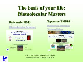 The basis of your life: Biomolecular Masters