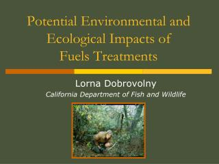 Potential Environmental and Ecological Impacts of  Fuels Treatments