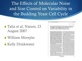 The Effects of Molecular Noise and Size Control on Variability in the Budding Yeast Cell Cycle