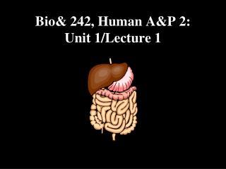 Bio 242, Human AP 2: Unit 1