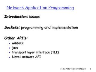 Network Application Programming