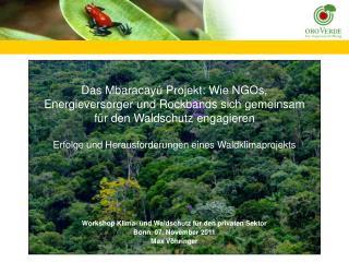 Workshop Klima- und Waldschutz für den privaten Sektor Bonn, 07. November 2011  Max Vöhringer