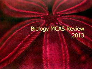 Biology MCAS Review 2013