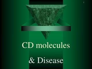 CD molecules