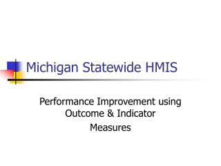 Michigan Statewide HMIS