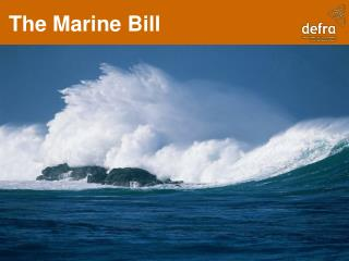 The Marine Bill