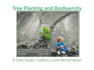 Tree Planting and Biodiversity