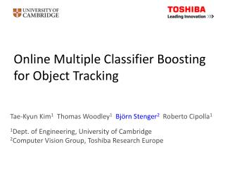 Online Multiple Classifier Boosting  for Object Tracking