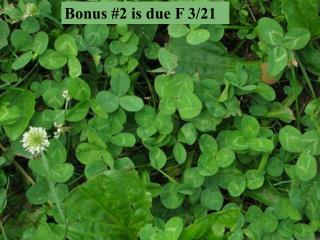 Bonus #2 is due F 3/21