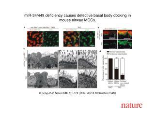 R Song  et al. Nature  510 , 115-120 (2014) doi:10.1038/nature13413