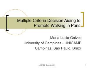 Multiple Criteria Decision Aiding to Promote Walking in Paris