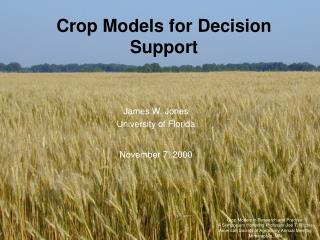 Crop Models for Decision Support