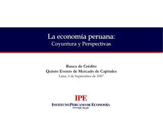 La economía peruana: Coyuntura y Perspectivas
