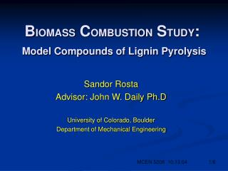 B IOMASS  C OMBUSTION  S TUDY : Model Compounds of Lignin Pyrolysis