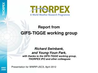 Report from  GIFS-TIGGE working group