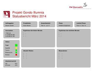 Projekt  Gondo Illumnia Statusbericht März 2014