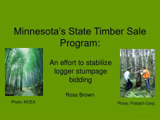 Minnesota's State Timber Sale Program: