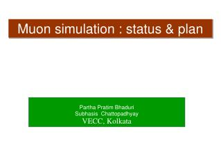 Muon  simulation : status & plan