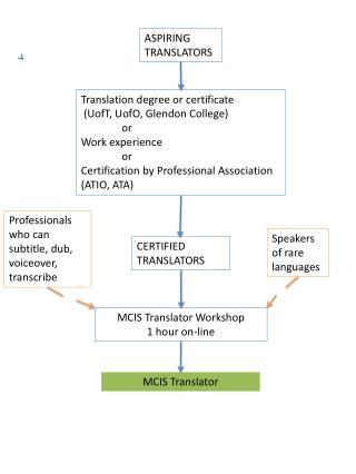 MCIS Translator