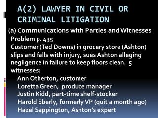 A(2) Lawyer in civil or criminal litigation
