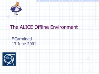 The ALICE Offline Environment