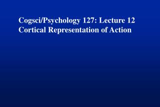 Cogsci/Psychology 127: Lecture 12 Cortical Representation of Action