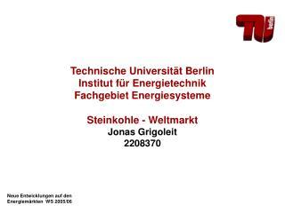 Technische Universität Berlin Institut für Energietechnik Fachgebiet Energiesysteme