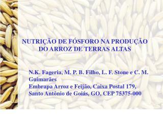 NUTRIÇÃO DE FÓSFORO NA PRODUÇÃO DO ARROZ DE TERRAS ALTAS