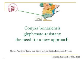 Conyza bonariensis  glyphosate-resistant:  the need for a new approach.
