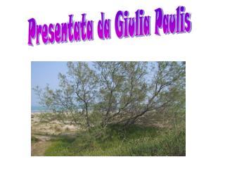 Presentata da Giulia Paulis