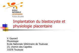 Implantation du blastocyste et physiologie placentaire