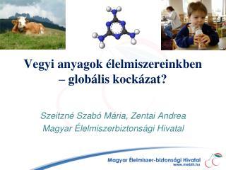 Vegyi anyagok élelmiszereinkben – globális kockázat?