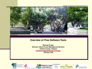 Overview of iTree Software Tools Michael Knapp Director, Urban Forest Management Division