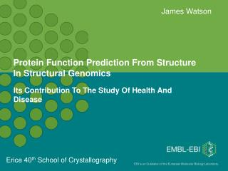 Protein Function Prediction From Structure In Structural Genomics