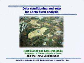 Data conditioning and veto  for TAMA burst analysis