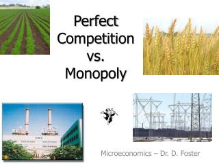 Perfect Competition vs. Monopoly