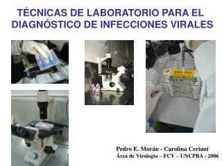 TÉCNICAS DE LABORATORIO PARA EL DIAGNÓSTICO DE INFECCIONES VIRALES