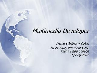 Multimedia Developer