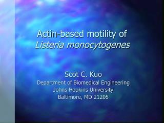Actin-based motility of Listeria monocytogenes