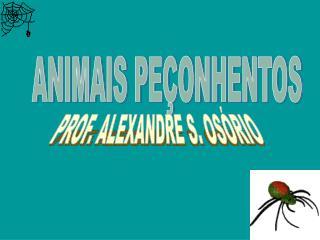 ANIMAIS PE ONHENTOS