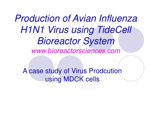 A case study of Virus Prodcution using MDCK cells