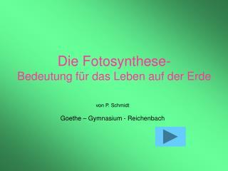 Die Fotosynthese- Bedeutung f r das Leben auf der Erde