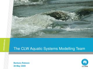 The CLW Aquatic Systems Modelling Team