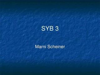 SYB 3